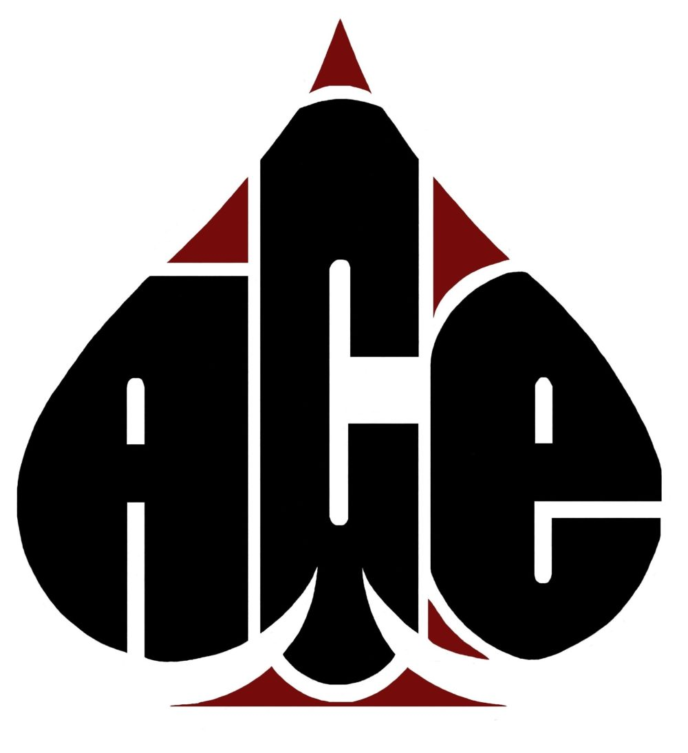 Ace Home Page Ace Franchise Services